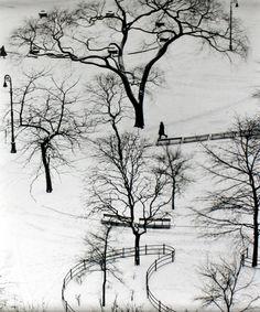 André Kertész http://www.pedrosilmon.com/blog/wp-content/uploads/2011/07/14_WashingtonSquare1.jpg
