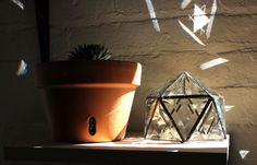 Stained Glass Bevel Geodesic Plant Topper by HalonaGlass