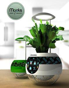 Future technology Concept Pot Moots