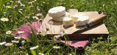 Le Fromage Saint-Marcellin