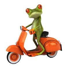 The funny frog's life.  #funnyfrog #frog #scooter #funny