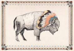 ● Tukota // The White Bison Book ● - Sandra Dieckmann | Illustration