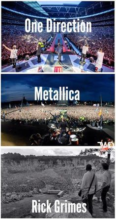 One Direction... Metallica ...Rick Grimes. Rick rocks!!! But definitely wouldn't mosh or crowd-surf in that crowd! LOL