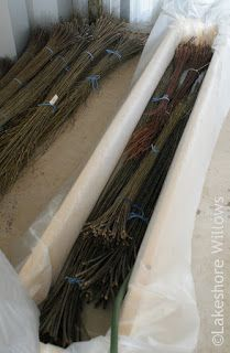 When I was ready to use my first harvest of willow - dried for basketry - a couple of years ago, I decided to start small and my husband mad...