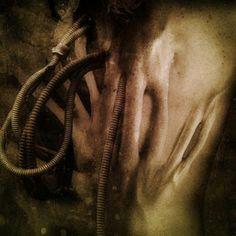 brutalgera: Vacvvm - Whoraculate (2015), Deathgrind