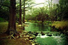 Beauty in West Texas