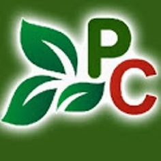 Produce Collective is a fresh produce industry and helps in better connecting the global produce industry Growers, Sellers, Buyers and linked services