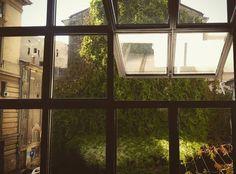 Bucharest Bucharest, Windows, Window, Ramen