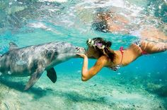 Anywhere that I can swim with dolphins is my new favorite place! :D