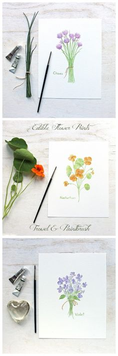 Three Edible Flower Prints from the watercolor series by Kathleen Maunder of Trowel and Paintbrush