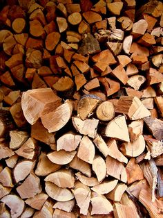 firewood  for the fall and winter @ the cabin. nothing like a roaring fire in a cabin.