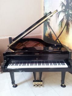 Like New!!!only 25 years of age...Steinwey Grand Piano Type A. Black, Made in Hamburg - Excellent Condition, Call for Price!  0812.938.0852/ Pin:23691ACB