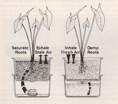 Flood and drain Restricted Plans - Gravel