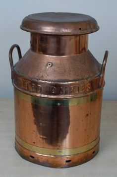 A copper milk churn which I find simply eye-catching and beautiful as an artefact in the home.