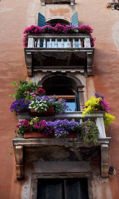 Flower Balcony in Venice. This looks so beautiful.