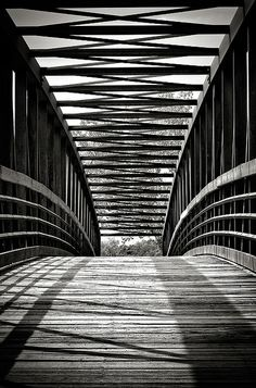 Berg Park in Farmington, bridge, path, curve, lines, architechture, wooden boards, shadows, breathtaking, symmetrical, photograph, photo b/w.