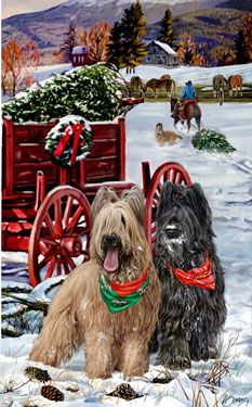 Briard Christmas Holiday Cards are 8 x 5 and come in packages of 12 cards. One design per package. All designs include envelopes, your personal message, and choice of greeting. Christmas Scenes, Christmas Animals, Christmas Cats, Christmas Holidays, Cowboy Christmas, Country Christmas, Vintage Christmas, Christmas Card Pictures, Holiday Pictures