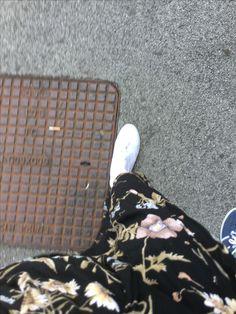 Walk In My Shoes, Dandelions, Dandelion, Taraxacum Officinale