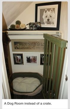 Turn A Closet Or Small Space Into A Dog RoomPlease don't forget to like. If your going to save then please remember to like, if your out of likes then hit the share button  Don't forget to view my other tips and follow. Thanks