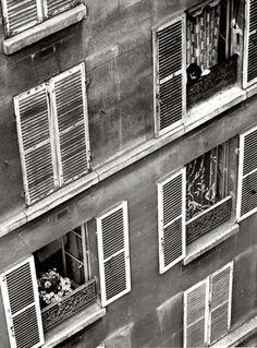 Paris, 1925 - André Kertész #fineart #bw #photography More at http://joshcampbellphoto.com/blog/