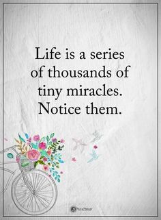 Life is a series of thousands of tiny miracles. Notice them. #powerofpositivity #positivewords #positivethinking #inspirationalquote #motivationalquotes #quotes #life #love #miracles