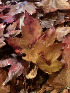 A Mama's Guide to Preserving Leaves in Beeswax as a Family