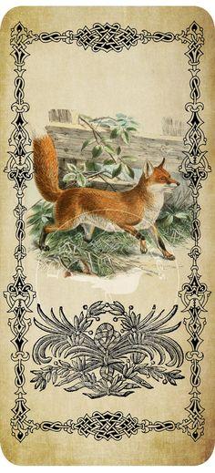 fox tags