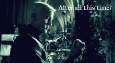 #wattpad #fanfiction A co gdyby tak Draco zakochał się w... jabłku? Art tworzony przez:   elentori.deviantart.com