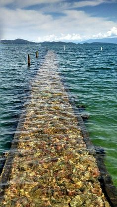 Flathead lake. Polson montana This made me think of the journey we take and the one that leads us home. Welcome home. I missed you.