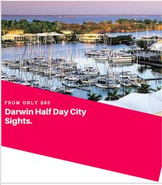 Darwin is a great ropical city with so much history. On the tour you will learn about the role Darwin played in WW2, how the people of the city survived Cyclone Tracy in 1974 and how Darwin was rebuilt.  #Darwin