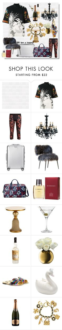 PH,my miracle baby by clydeashes on Polyvore featuring Dries Van Noten, Dolce&Gabbana, Chanel, Gucci, Rimowa, The Upside, Burberry, Chelsea House, Nordstrom and Ferrari