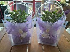 Giardini e Paesaggi creazione bomboniere con piante grasse e bonsai, per matrimoni e comunioni
