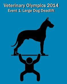 Veterinary Olympics Event 1 http://atwork.avma.org/wp-content/uploads/2014/02/Olympics.writeups.pdf
