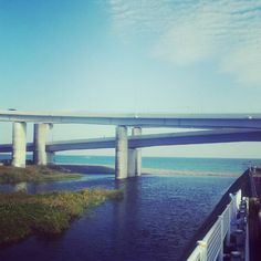 海と川と高速道路 - @kijisaba- #webstagram