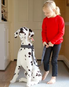 Cannot have pets in your townhouse or apartment-now you can!Kayce Hughes.com
