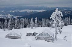 Winter in Carpathian mts, UKRAINE