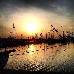 A ‪#‎sunset‬ among boats and seagulls. Enjoying the last rays of sun in ‪#‎Rimini‬'s port - Instagram by gio_marra