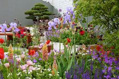 Whether you're taking a spring break to the capital or you're a London local, our list of things to do in London has something for everyone. Chelsea Flower Show, Chelsea Garden, Garden Show, Flowers, Plants, Image, Gardens, Google Search, Florals
