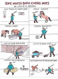 Winter with horses lol