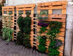 #Huerto vertical hecho de #palets de #madera