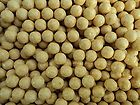 CELL FLAVOUR CARP FISHING BOILIES AMINO GLM + COCONUT 15MM