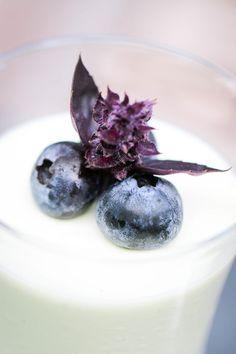 Basil Yogurt Panna Cotta