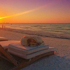 No hay mejor lugar para descansar que Holbox QuintanaRoo Mxicohellip