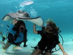 Planning Your Scuba Diving Trip in Grand Cayman