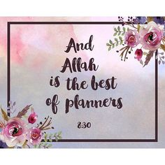 There is no person who can plan better than Allah! Trust in his plans for you.