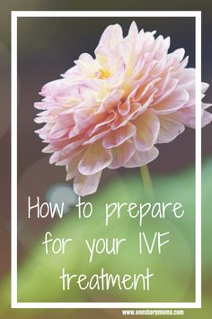 Top 10 Tips from an IVF Success Story - One Sharp Mama Early Pregnancy Signs, Pregnancy Tips, Ivf Preparation, Ivf Success Stories, Fertility Foods, Female Infertility, Thyroid Medication, In Vitro Fertilization, Ivf Treatment