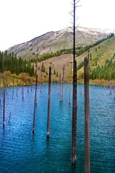 Lake Kaindy – Kazakhstan's Sunken Forrest: formed as a result of the massive 1911 Kebin earthquake.  There was a huge landslide which blocked the gorge and a natural dam was formed – and endured.  As the waters rose it submerged the Schrenk's Spruce growing in the area.