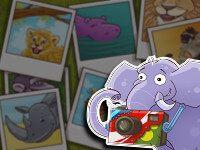 El elefante fotógrafo