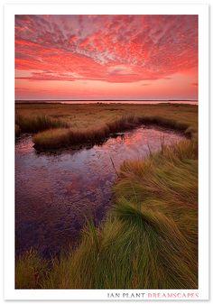 New Dawn - Sunrise over a salt marsh, Smith Island, Chesapeake Bay.  by Ian Plant Nature Photography, via Flickr