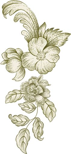 D Flowers, Indian Flowers, Botanical Flowers, Leaf Wall Art, Leaf Art, Flower Art Images, Fabric Paint Designs, Border Embroidery Designs, Black And White Flowers